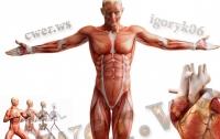 Шесть частей тела человек уже не использует (фото)