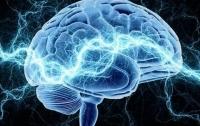 Учёные выявили участки мозга, отвечающие за правописание