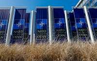 НАТО сохраняет боеготовность на фоне пандемии