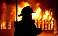 Масштабный пожар на Киевщине: погиб подросток
