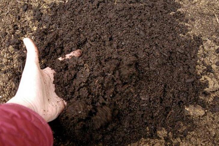 Земля для выращивание 9