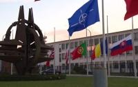 НАТО призвала РФ рассекретить проект