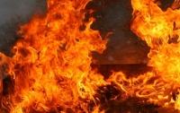 На Харьковщине сгорел дом – погибла пожилая хозяйка