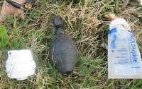 Саперов вызвали обезвредить секс-игрушку в виде гранаты