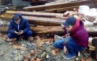 Во Львовской области дети расстреляли животных из пневмата