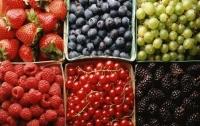 Урожай фруктов и ягод в этом году будет худшим за последние 40 лет