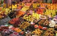 Мэр Львова считает, что на рынках безопаснее скупаться, чем в супермаркетах