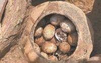 Китайские археологи нашли яйца, которым более двух тысяч лет