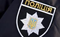 Пьяный мужчина избил на детской площадке в Луцке полицейского