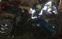 В Тернопольской области в ДТП травмированы семь человек