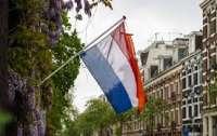 В Нидерландах граждане протестуют против локдауна