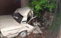 ДТП под Киевом: авто врезалось в дерево, погибли три человека