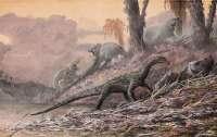 Таиландские ученые обнаружили останки нового вида динозавров
