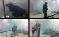 Результаты ДНК-теста: Роздобудько не взрывал «Домодедово»