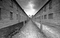 В Освенциме задержали израильтянина, осквернившего памятник жертвам нацизма