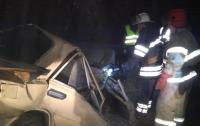 Под Киевом авто влетело в дерево: погибли двое жителей села Луговики