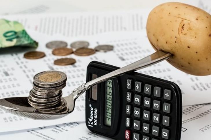 Вгосударстве Украина в нынешнем 2017г ожидается рост инфляции науровне 9,1%