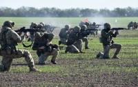 Польша и Украина выходят на новый уровень военного сотрудничества
