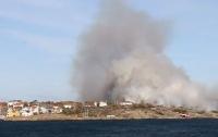 В Швеции из-за сигнальной ракеты загорелся остров (видео)