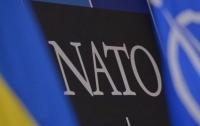 Диалог Украины с НАТО вышел на уровень настоящих союзников, - Порошенко