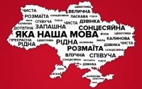 Закон о языке позволит украинцам сохранить страну , - мнение