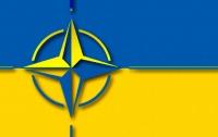 НАТО и Украина договорились о сотрудничестве в военной сфере