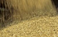 Мужчину засыпало зерном в Харьковской области