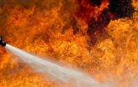 Под Киевом загорелся автомобиль с газом (видео)
