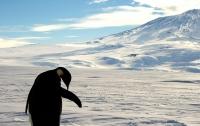 Американец стал первым, кто пересек Антарктиду без посторонней помощи