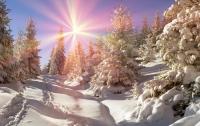 Метеоролог рассказала, какой будет зима в Украине