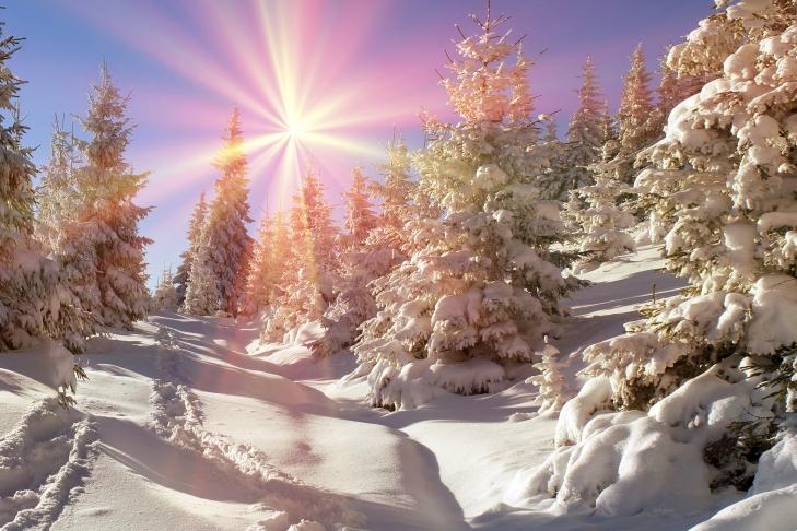 10 січня у західних областях 3-8° морозу та невеликий сніг
