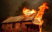 Число жертв лесного пожара в Калифорнии возросло