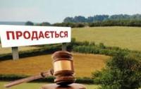 Социологи утверждают, что украинцы не хотят продавать землю