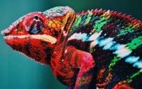 Создан первый нанолазер-хамелеон, способный изменять цвет