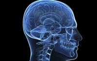 Найден способ омолодить старый мозг