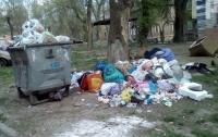 Жители города жалуются на то, что потопают в мусоре