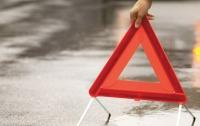 На Львовщине под колеса микроавтобуса попала семилетняя девочка