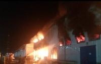 Под Одессой вспыхнул масштабный пожар на предприятии