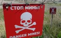 В ОБСЕ призвали к активному разминированию в Донбассе