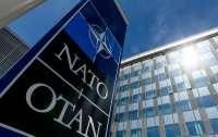В кабмине ФРГ сделали заявление о вступлении Украины в НАТО