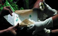 В Венесуэле конфисковали тонну колумбийского кокаина
