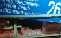 Вчера вечером хулиганы напали на трамвай в Харькове