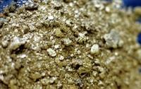 Гражданин Китая оштрафован за попытку вывезти золото в корпусе телефона
