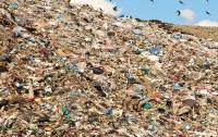 Неизвестные подожгли полигон бытовых отходов в Житомире