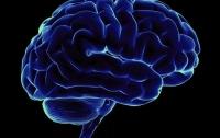 Мозг не принимает информацию, которая ему не нравится