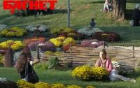 В Киеве покажут цветочный «ART модерн»