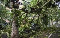 На Украину из Румынии надвигается мощный ураган