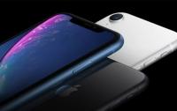 LG заняла второе место среди поставщиков OLED-дисплеев