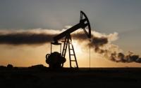 Цены на нефть упали из-за твита Трампа