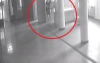 В мэрии города подрались две чиновницы (видео)